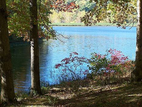 Lake at Yellowwood State Park by Karen Phillips