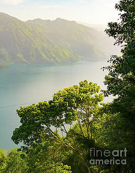 Tim Hester - Lake Atitlan Forest Sunrise