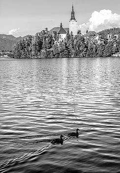 Lake Bled in Black and White by Andrew Matwijec