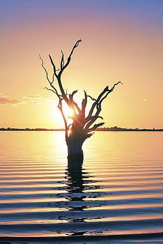 Lake Bonney Sunset by Ray Warren