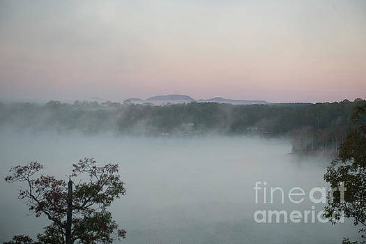 Dale Powell - Lake Bowen Foggy Morning