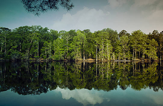 Lake Caddo by Justin Carrasquillo