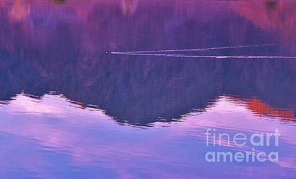 Lake Cahuilla Reflection by Michele Penner