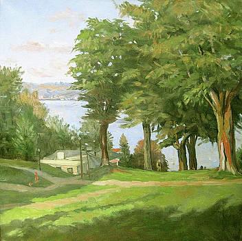 Lake Chautauqua in 68 by Zois Shuttie