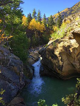 Lake Creek Falls by Carol Milisen