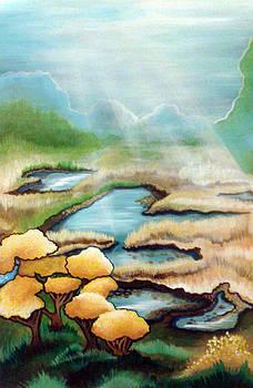 Lake Dalwigk  by Laura Noel