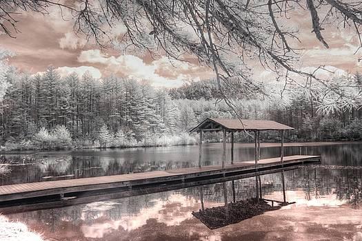 Lake Dense DuPont Forest North Carolina by Jane Linders