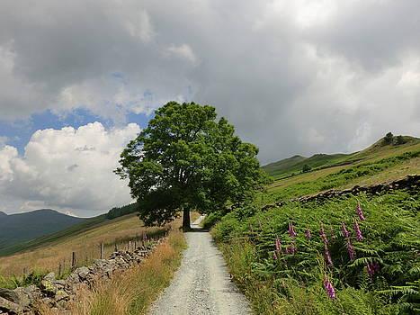 Lake District Hike by Beryllium Photography