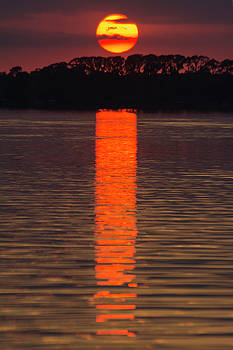 Lake Dora Sunset by Gene Norris