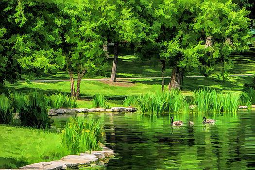 Lake Ellyn Geese by Christopher Arndt