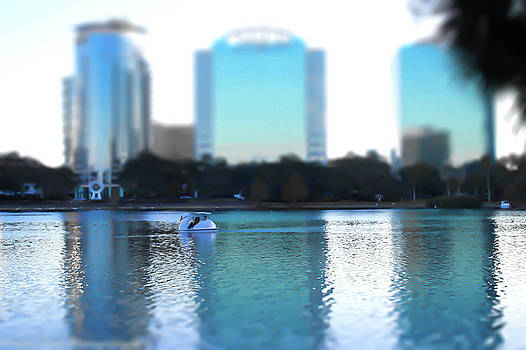 Lake Eola Orlando by Patti Colston