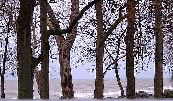 Lake Erie ohio by Jackie Bodnar