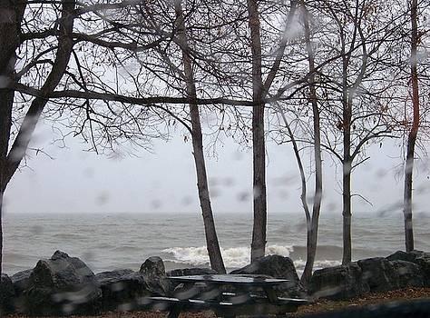 Lake Erie Rain by Jackie Bodnar