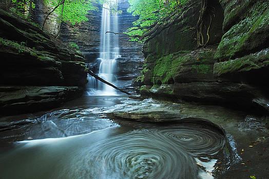 Lake Falls Swirls by Mike Thompson