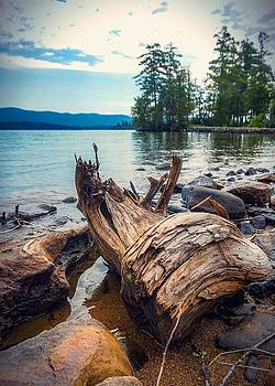 Lake George Palette by Kendall McKernon