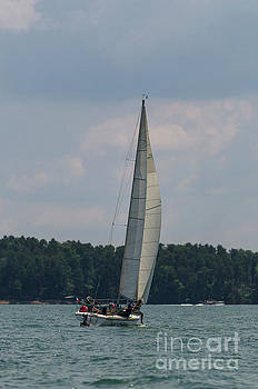 Lake Hartwell Sailing by Dale Powell