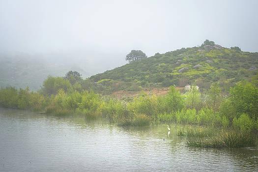 Lake Hodges - Heron Bay by Alexander Kunz