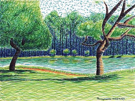 Lake In The Park by Daniel Ribeiro