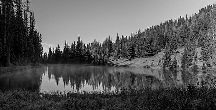Lake Irene In Black And White by Michael Putthoff