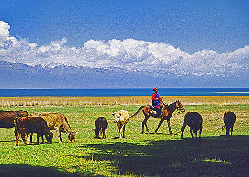 Dennis Cox - Lake Issyk-kul Pasture