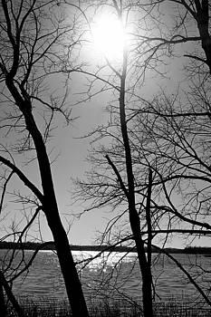 Robert Meyers-Lussier - Lake John Study 3