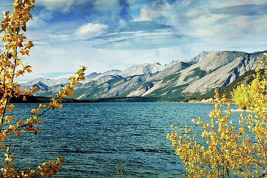 Marty Koch - Lake Lake