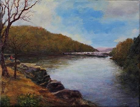 Lake Lure  by L Stephen Allen