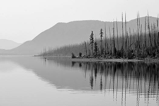 Lake McDonald Twin Reflections Black and White by Bruce Gourley