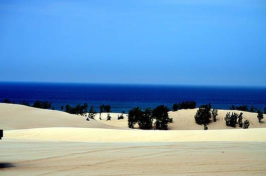 Lake Michigan from Silver Lake Sand Dunes by Samantha Boehnke
