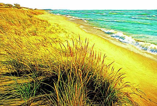Dennis Cox - Lake Michigan Shore