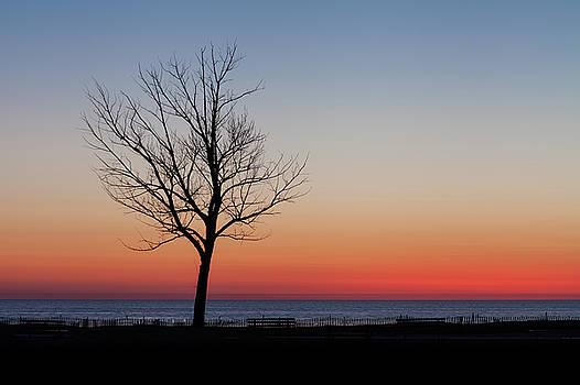Lake Michigan Silhouette by Fran Riley