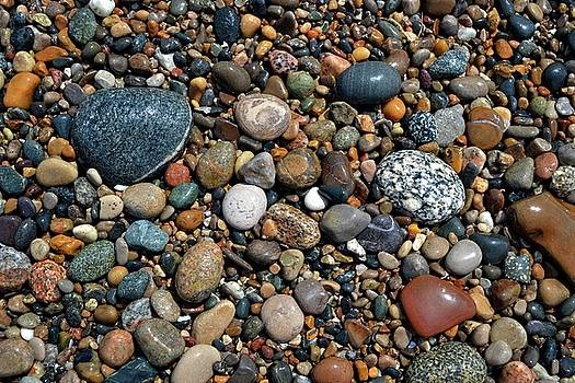Lake Michigan Stone Collection by Michelle Calkins