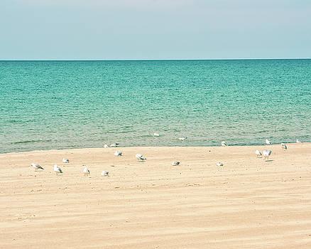 Lake Michigan Tranquility by Emily Kay