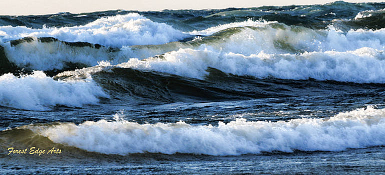 Lake Michigan Wave Action by Dick Bourgault
