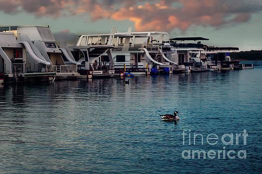 Lake Murray Morning at the Marina by Tamyra Ayles