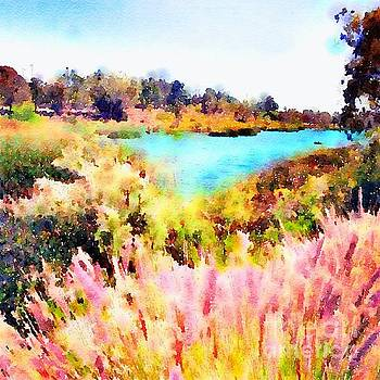 Lake Murray San Diego inlet with Grasses by John Castell