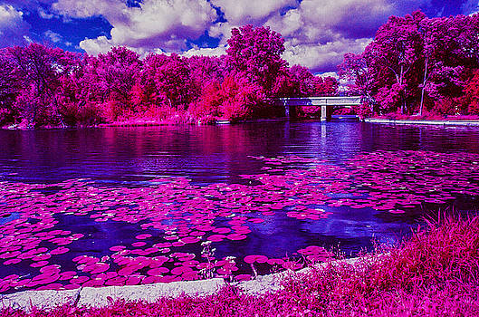 Lake of the Isles in Infrared by Lonnie Paulson