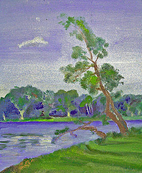 Lake of the Sorrowful Tree by Paul Thompson