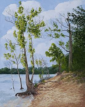 Lake Path by Kathleen Keller