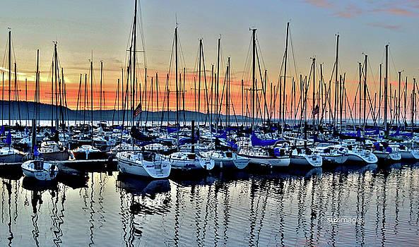 Lake Pepin Sunrise by Susie Loechler