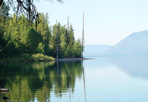 Lake Reflection by D Nigon