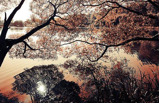 Jenny Rainbow - Lake Reflections. Airy Lace of Autumn