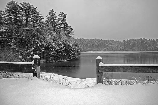 Lake Rico II by Mark Wiley