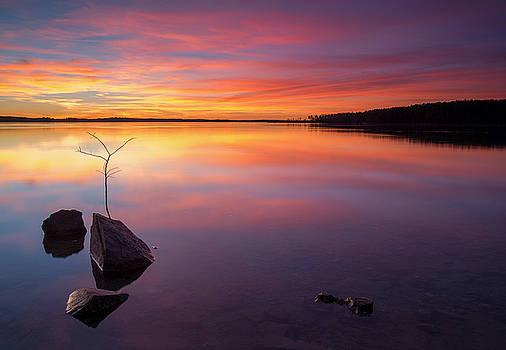 Lake Russell 4 by Derek Thornton