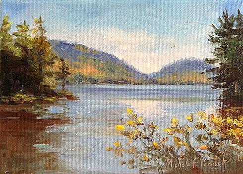 Lake Scene in Maine by Michele Tokach