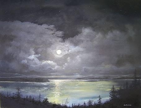 Lake shore moonscape  by Ken Ahlering