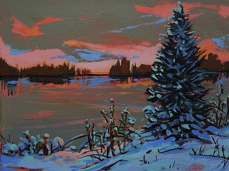 Lake Shore Sunset by Catherine Robertson