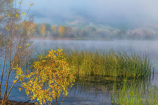 Marc Crumpler - Lake Shoreline at Sunrise