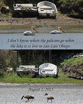 Gary Canant - Lake so low in San Luis Obispo