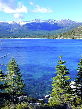 Lake Tahoe East Shore by Ceci Bahr